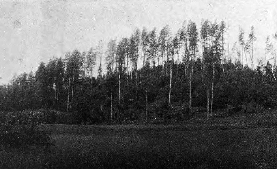 Adamovas pilskalns