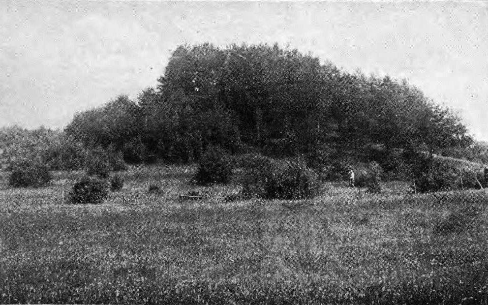 Belogrudovas – Egļu pilskalns