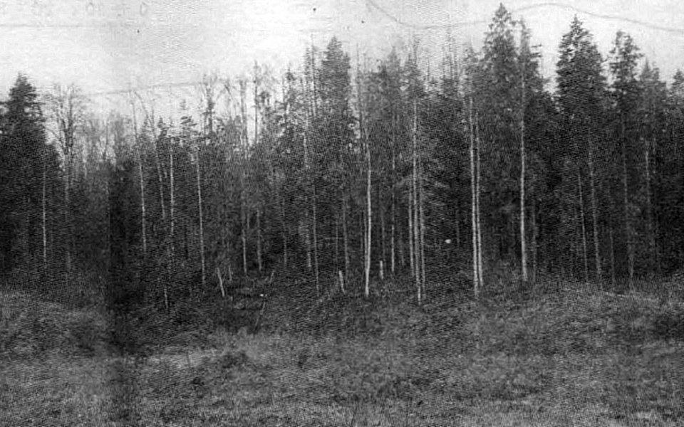 Kapusila pilskalns
