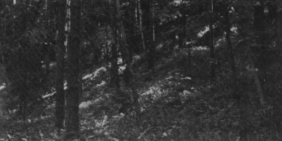 Leimanišķu Baterijas kalns