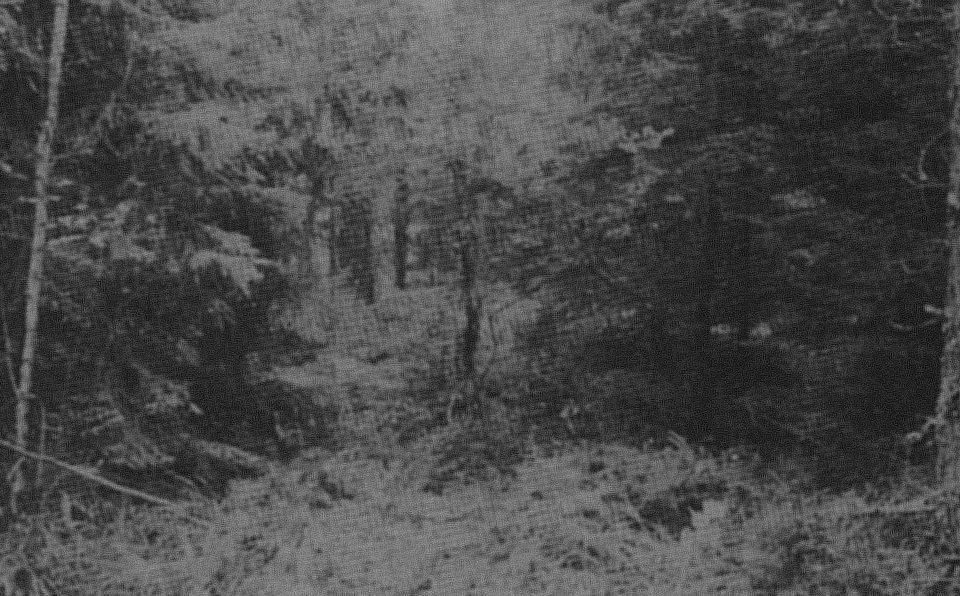 Leimanišķu pilskalns