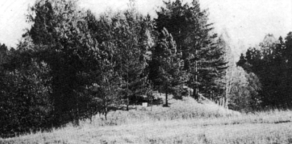 Fridrihovas pilskalns