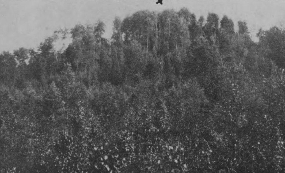 Zeļenopoles Karātavu kalns