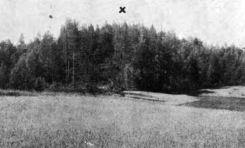 Dzirkaļu (Gorku) pilskalns